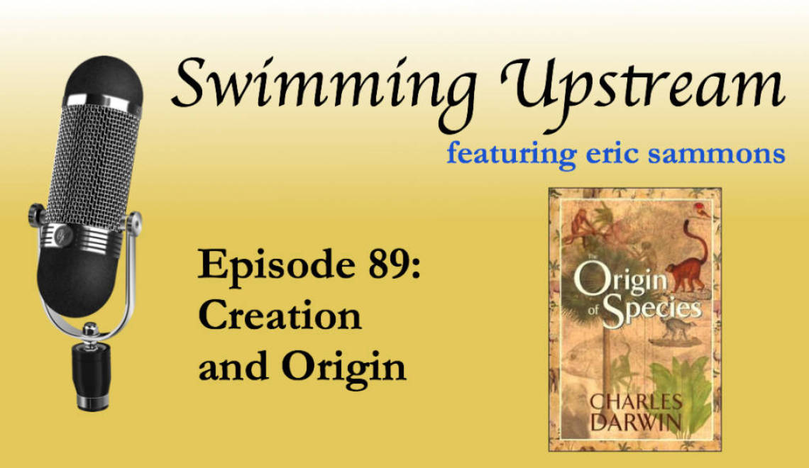 89: Creation and Origin